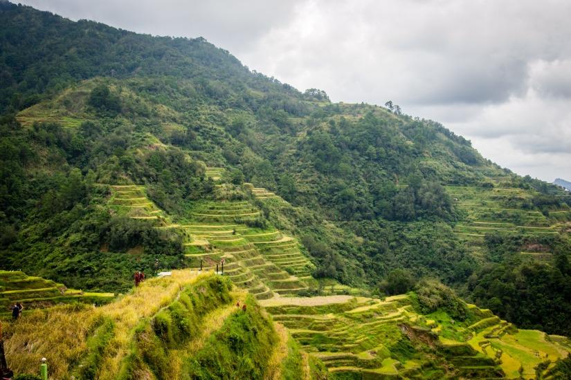 Rice Terraces of the PhilippineCordilleras